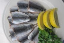 Fremantle Sardine Fillets