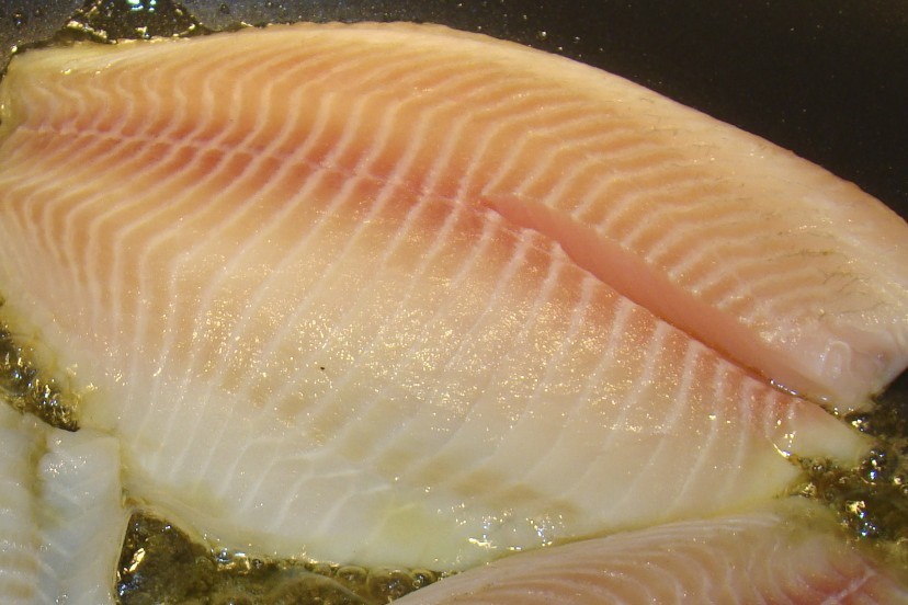 how to cook frozen fish fillets in a pan