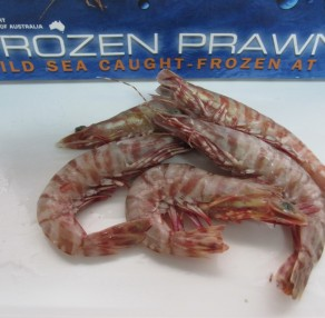 Large Raw Tiger Prawns