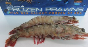 Raw Jumbo Tiger Prawns