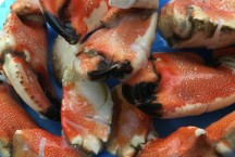 Cooked Jonah Crab Claws
