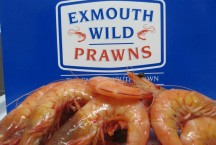 Extra Large Cooked King Prawns